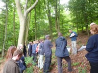 The afternoon session was held at the woodland at Chinthurst Hill where Alistair Yeomans of the Sylva Foundation explained to Surrey Wildlife Trust staff how to divide a woodland into compartments and sub-compartments for the purposes of a woodland plan