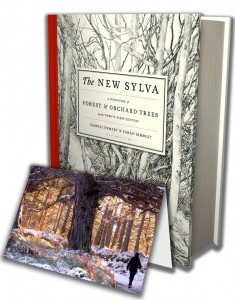 Christmas special deal - signed copy of The New Sylva and free pack of cards