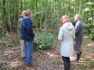 Providing coppice management advice during a Good Woods visit