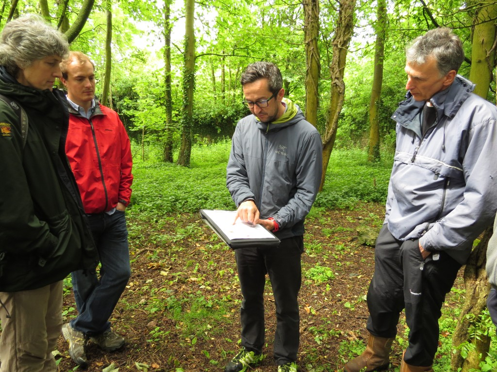 Reading your woodland - training with Cumbria Woodlands