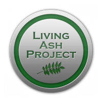 Living Ash Project
