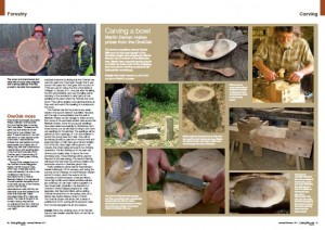 OneOak article in Living Woods
