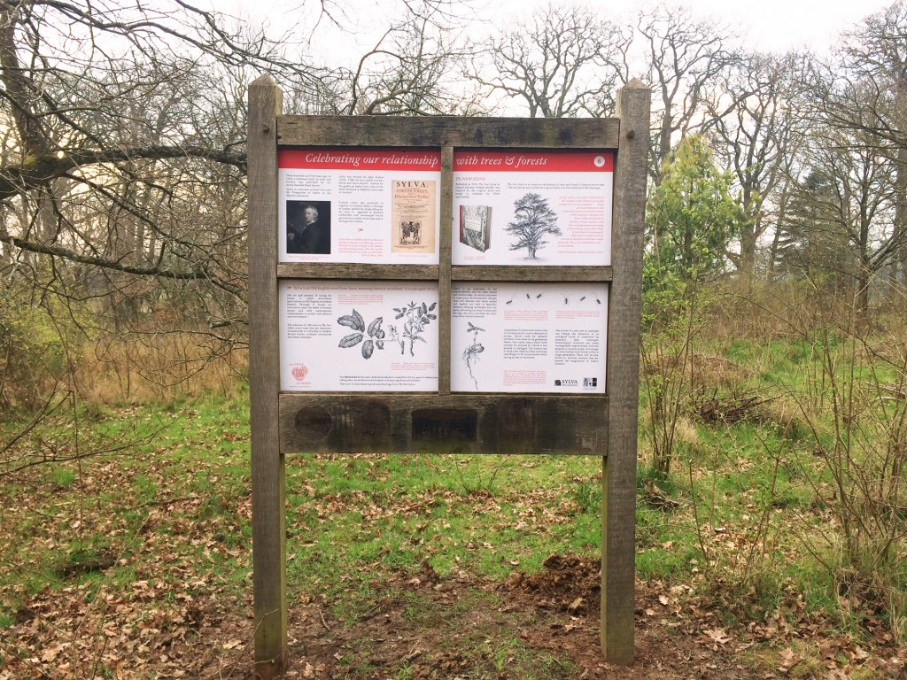A large panel from the Sylva Trail at the Harcourt Arboretum