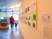 OneOak timeline and acknowledgement of exhibition sponsor Scottish Forestry Trust