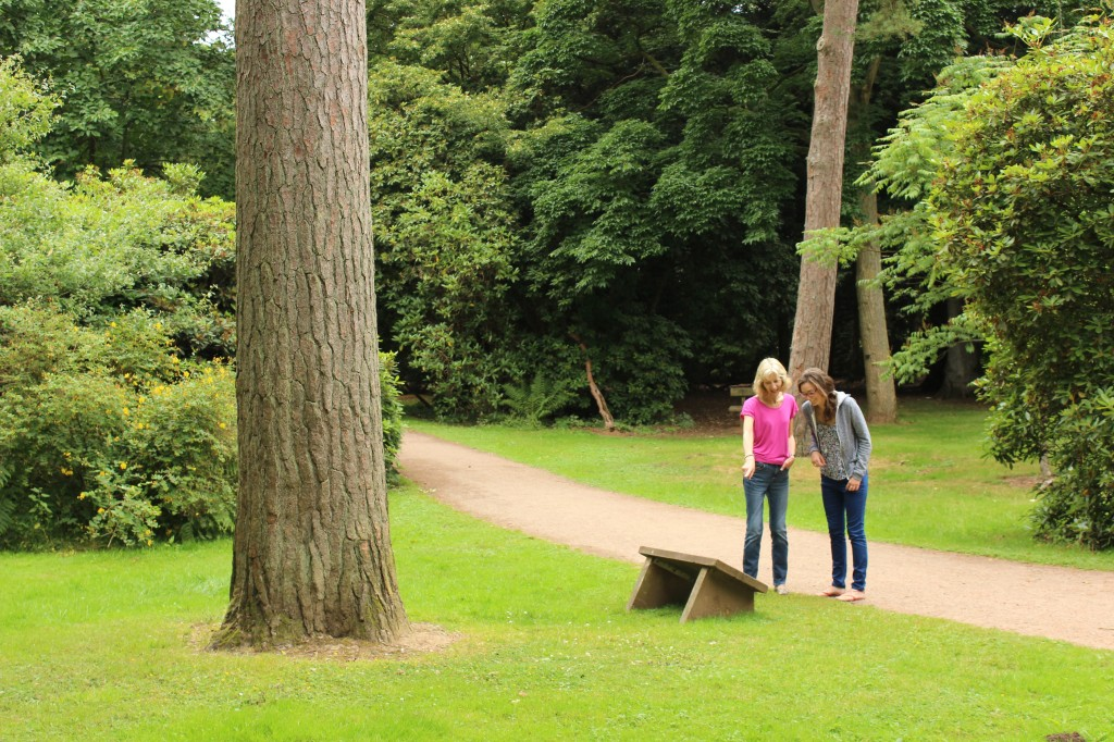 The public enjoying the Sylva trail at Westonbirt National Arboretum