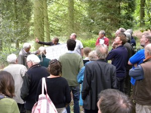 What's in a woodland - demonstration sessions will be run to help community woodland groups identify and measure trees in their woods.