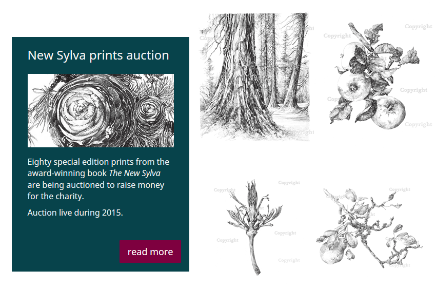 Latest prints from The New Sylva online auction