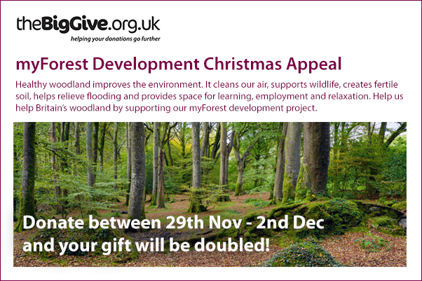 myForest development Christmas appeal with the Big Give