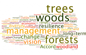 A Wordle from the 2015 Resilience Accord